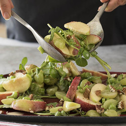 Apple and celery salad with nuts edited